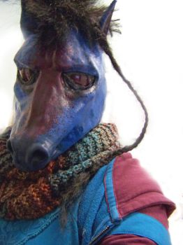 Cerulean Sangria Horse hood 1 by user-name-not-found