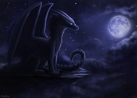 Night Dragon by Meep--Merp