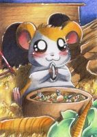 Hamtaro! by Hyacinthley