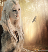 Elven Dreams by Vampiric-Time-Lord