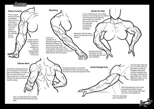 Tutorial: Arms 3 by Bambs79