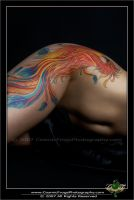 Phoenix Tattoo - Female Canvas by PaigeKay