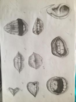 lips study by TT-RS