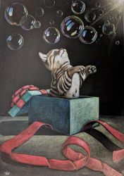 Cat in the Box Prismacolor by CosmicDebris