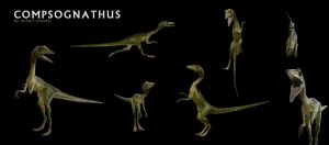 Compsognathus by fluxcreations
