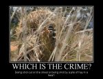 Which crime demotivational by Denodon