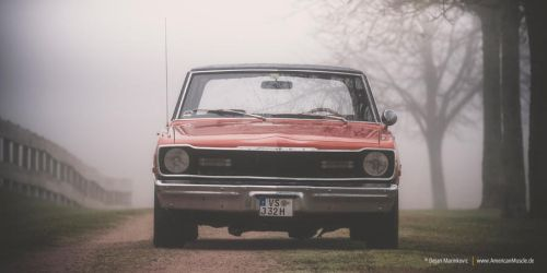dart in the fog III by AmericanMuscle