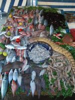as suweira: fishmonger by cHeMiCaL--sToCk