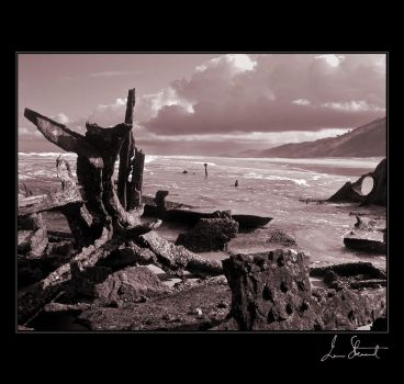 Ship Wreck, Fraser Island by eehan