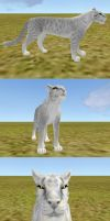 2x FELINE TEXTURE + eye texture SALE by NorthernRed
