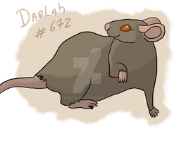 Darlah (Mysterious-Lil-Lady rat) by Scotis