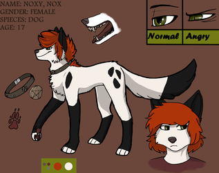NOXY REFERENCE SHEET 2015 by N-o-x-y