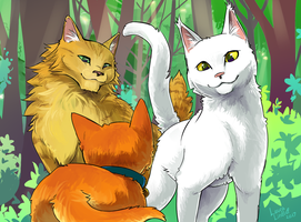 Warriors: Into The Wild by NiaNook33