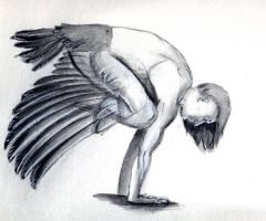 Crow Pose by LiminalWorks