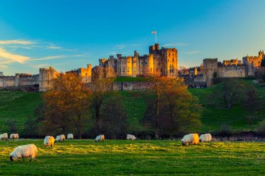 Alnwick Castle by newcastlemale