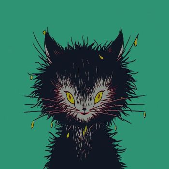 wet cat by xuh