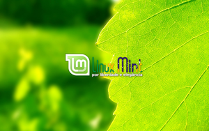 To Linux Mint Brazil [a by malvescardoso