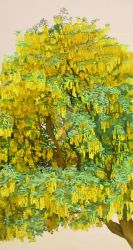 A Thin Slice Of Laburnum by eastcorkpainter