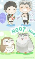 BokuAka  Owl vers  by Brabbitwdl