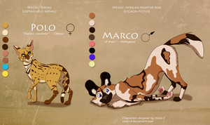 Serval + Wild Dog - Closed by Nala15