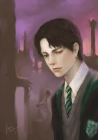 Tom Riddle by woshibbdou