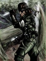 snake eater by SquallLeonhart245