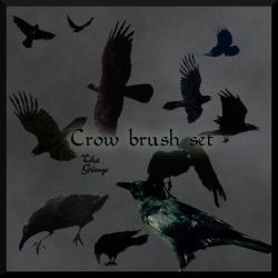 Crow and Raven brush set by faerykisses