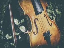 Violin in the woods by Inilein