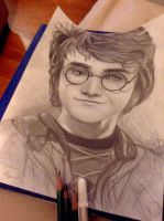 Harry Potter by mpinz