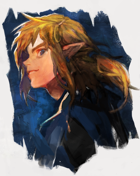 BREATH OF THE WILD by neve25