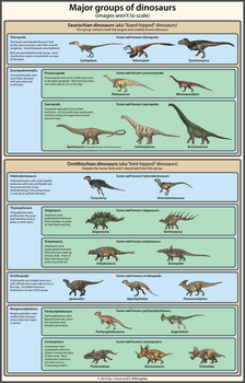 Dinosaur Classification Simplified by EWilloughby