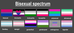 Bisexual Spectrum by n0-username