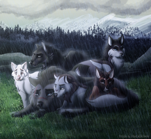 DotW - Crying In The Rain Collab by tisea