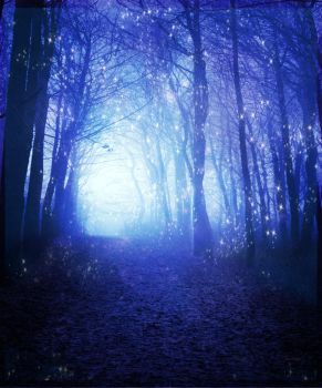 Enchanted Premade Forest by galdimi