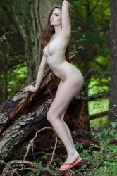 curves in the woods by Flaming-Ink-Imaging