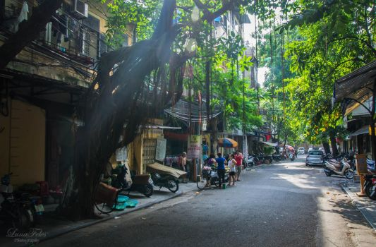 streets of Hanoi by LunaFeles