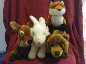 Webkinz lot for Sale  by Gerundive