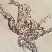 SPIDERMAN sketch by drawhard