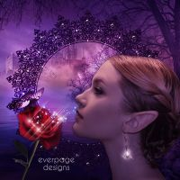 Senseness by Everpage