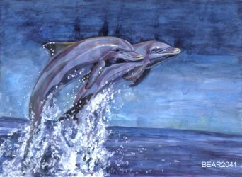Bottlenose Dolphins by BEAR2041