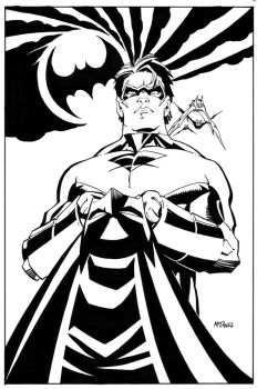 NIGHTWING and BAT-COWL by ScottMcDaniel