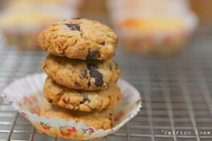 Crispy chocolate cookies 1 by patchow