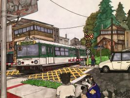 Raccoon Level Crossing  by ArtRock15