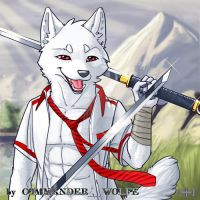 A-50-a by COMMANDER--WOLFE