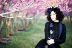 Steampunk and Peach Blossoms 2