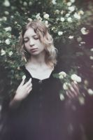 In the fading garden of dreams by MariaPetrova
