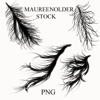 STOCK PNG windy rainy hair by MaureenOlder
