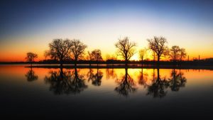 Good Morning Manawa by 311Matman