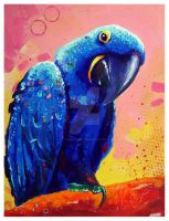 Hyacinth Macaw by TooMuchColor