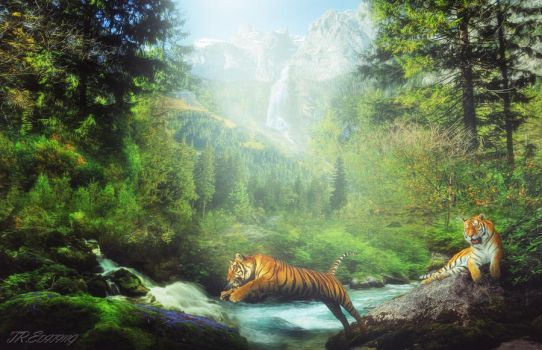 Tiger Land by TR-Editing